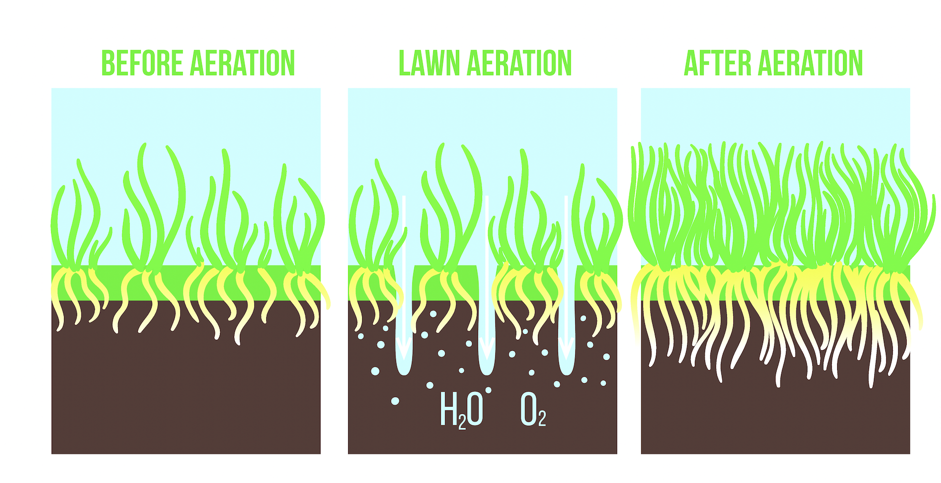 process-lawn-aeration