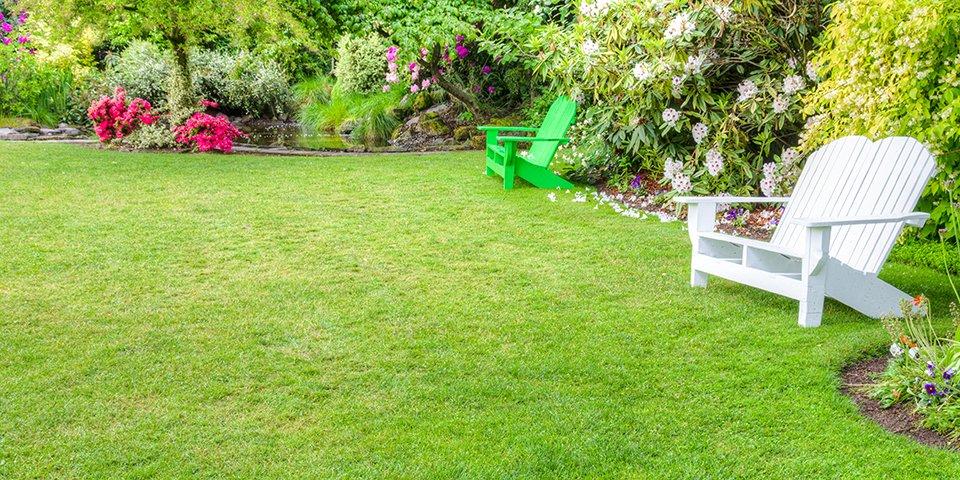 lawn-fertiliser-guide